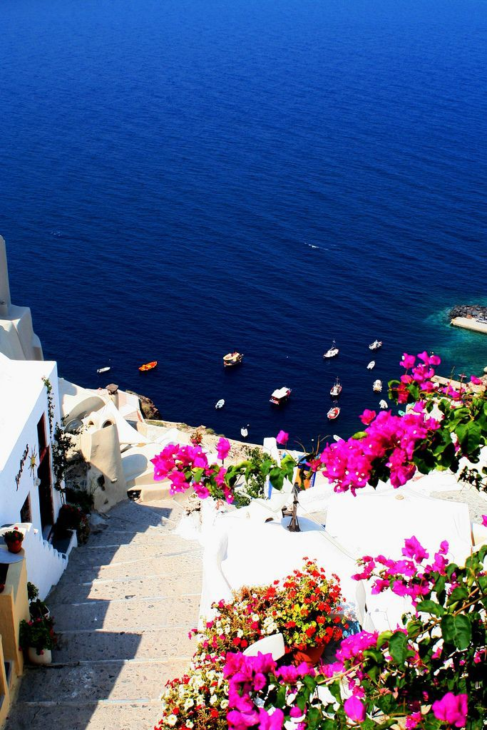 Greece Greek Pink Travel Blogger Flower Blog